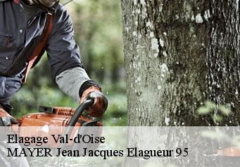 elagage arbre 95