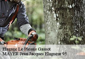 Elagage  le-plessis-gassot-95720